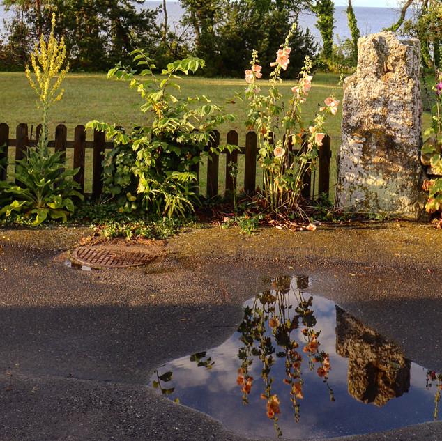 Vattenspegel