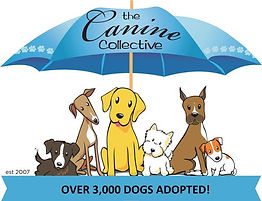 Canine Collective Logo.jpg