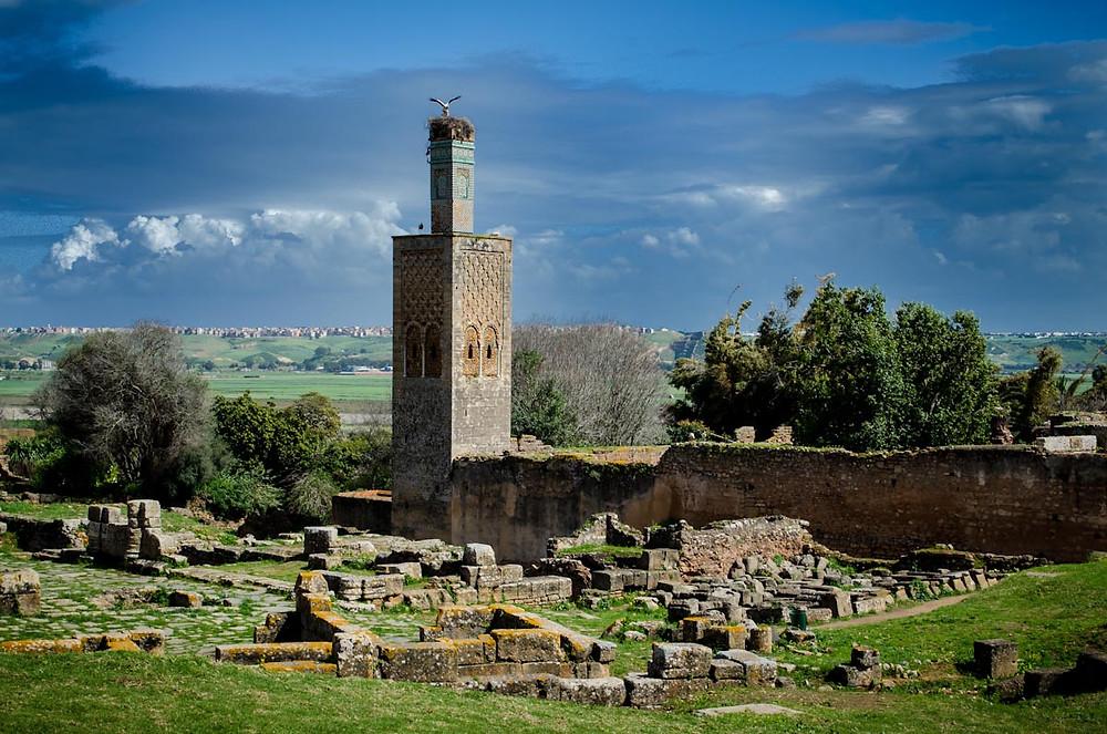 Minaret of Chellah.jpg