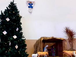 Comunidade é convidada a deixar mensagens na árvore de Natal da igreja São Roque