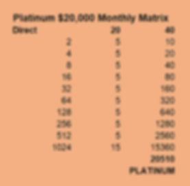 platinum-matrix.jpg
