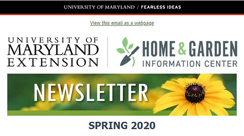 2020 Spring.jpg