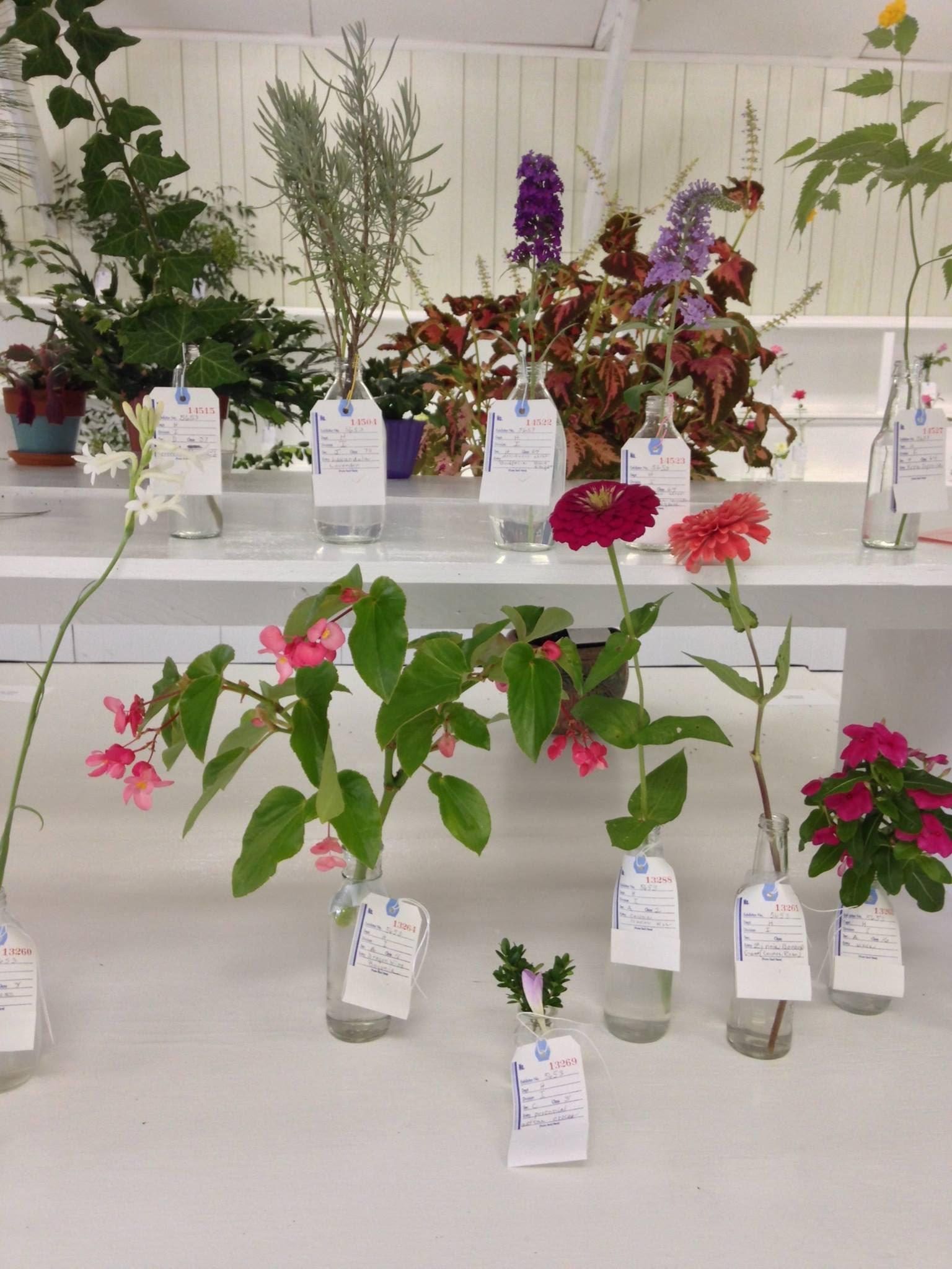 horticulture3