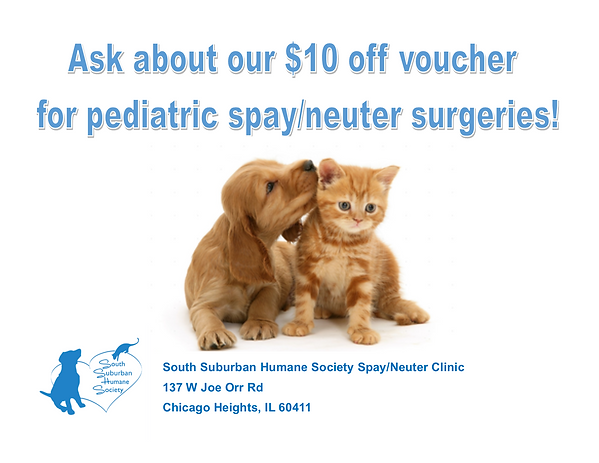 Pediatric Spay-Neuter.png