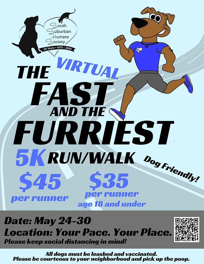 Virtual 5k.png