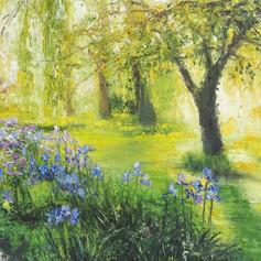 Riverside Garden, Spring Sunshine 2020