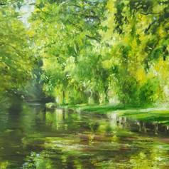 Summer Canal 2019