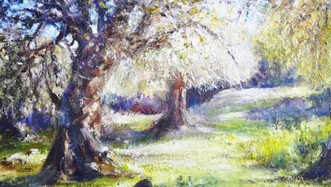 Spring Glade,