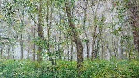 Oak Copse, Summer Rain