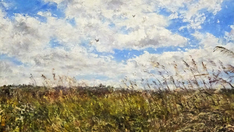 Summer Breeze, Meadow and Skylarks