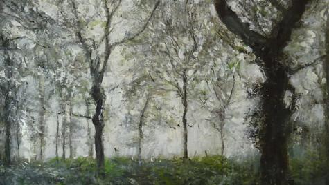 Oak Copse, After the Rain, 2021 Oils on paper on board, 40 by 50cm £850