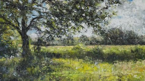 Summer Oak and fields, 2021 Oils on gesso board, 20 by 30cm, £495