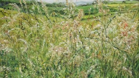 Grasses and Dorset Hills