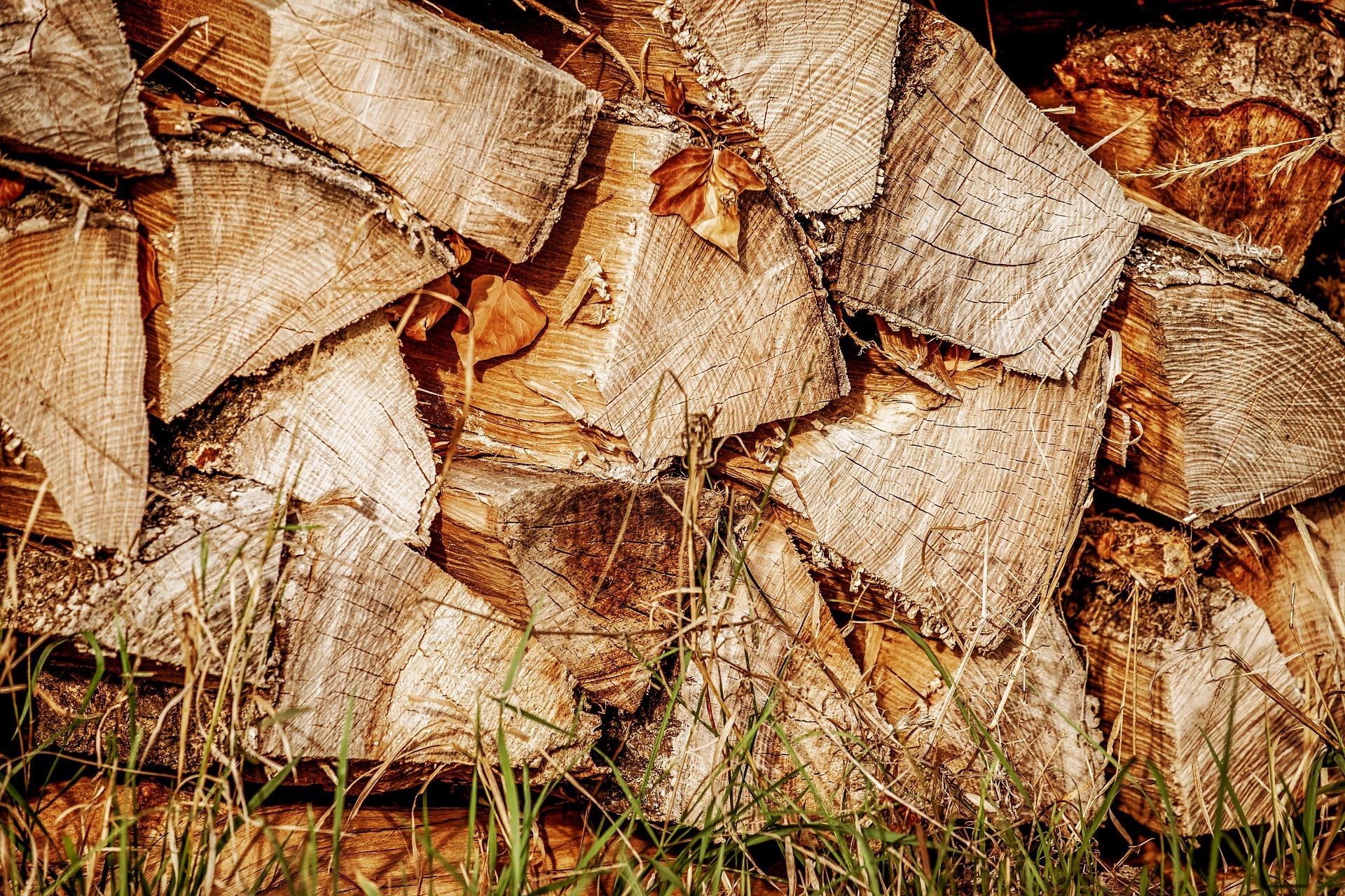 wood-3674863_1920_edited