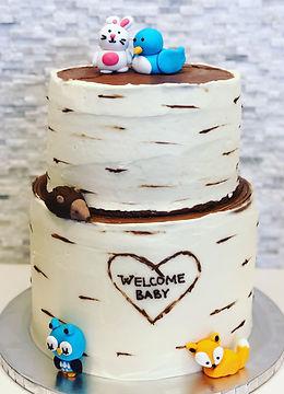 Custom Tiered Baby Cake