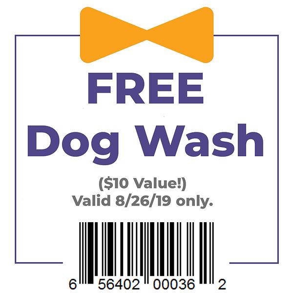 dog wash2.jpg