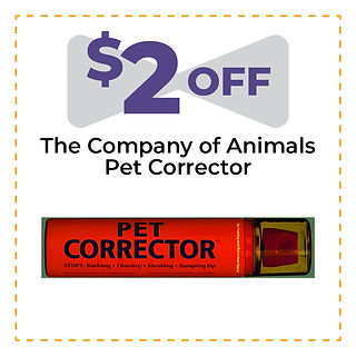 Coupon Template_August13.jpg