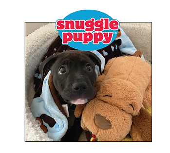 Snuggle Puppy encompass.PNG