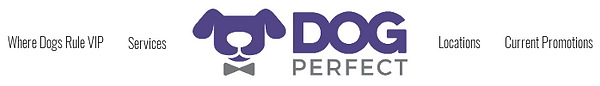 DPEmailHeader1.png