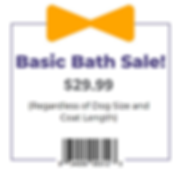 Coupon- Basic Bath _29.99 Graphic.png