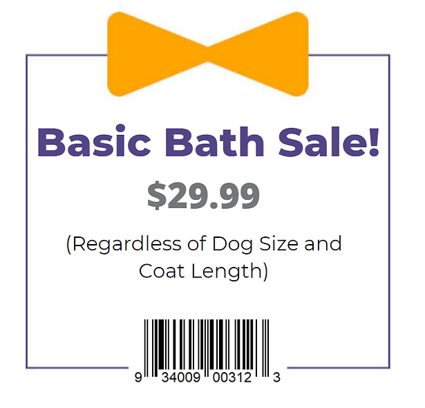 Coupon- Basic Bath _29.99 Graphic.png