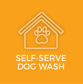 Self Wash icon (1).jpg