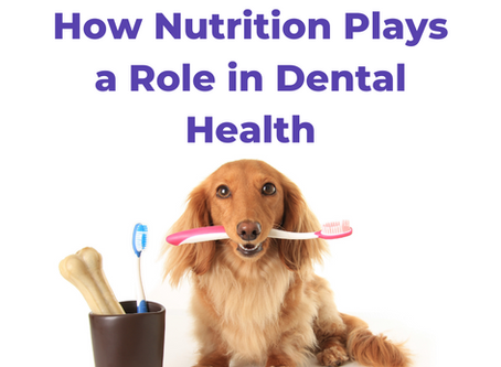How Nutrition Plays a Role in Dental Health