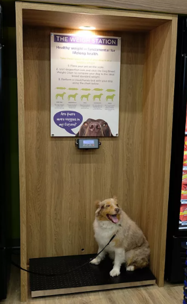 DOGPerfect's Weigh Station