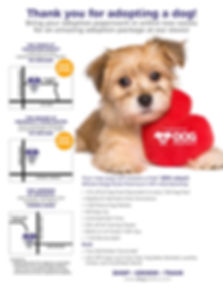 Adopt Flyer Premium VIP Offer-All Stores
