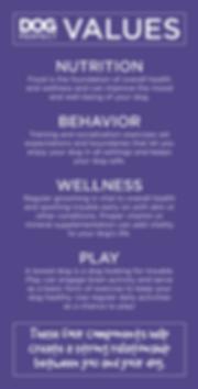 Brand Values_Artwork (002).png