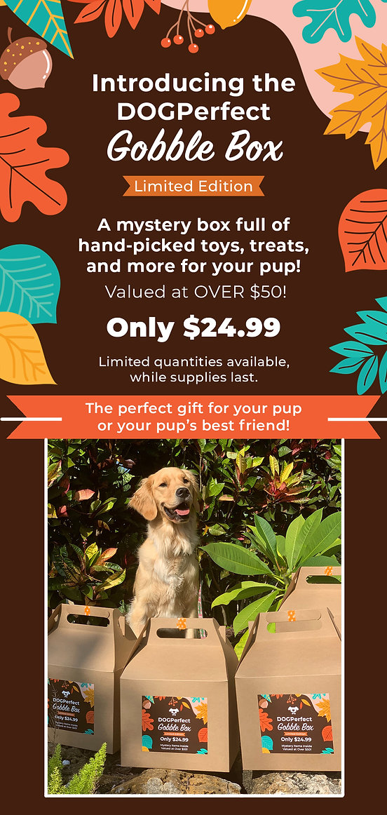 DOGPerfect Gobble Box Thanksgiving 2020.