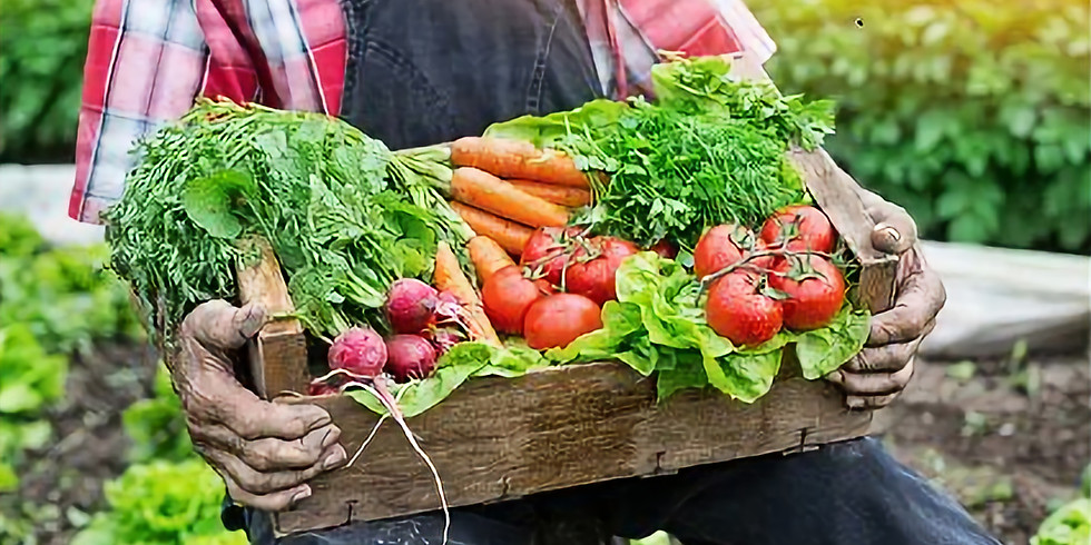 YAH Fresh Vegetable Luncheon