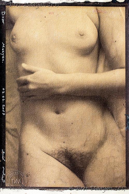 Albumen print from digital negative, 35 x 23 cm