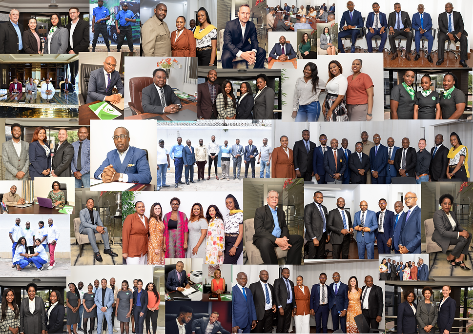 Africa Union Group Photo Collage.png