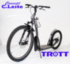 Trott.01.jpg
