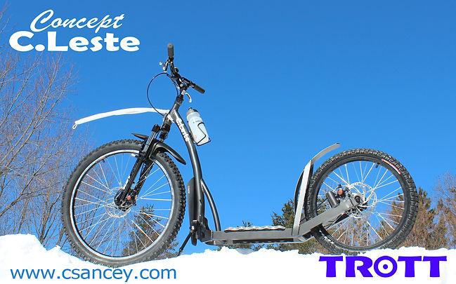 Trott08.jpg