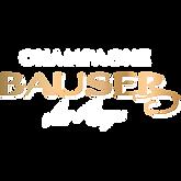 logo bauser.png