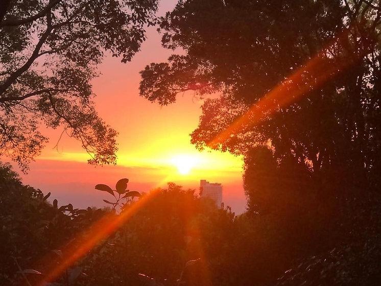 奥の院 朝陽.jpg