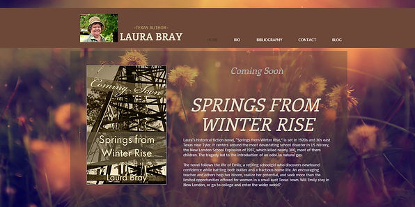 laurabray website screenshot.JPG