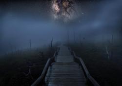 霧の向こうへ