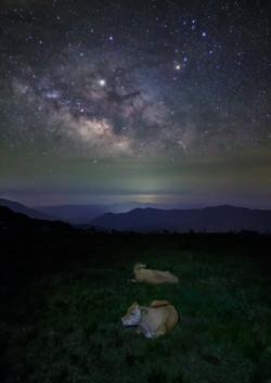 星空の下で眠る