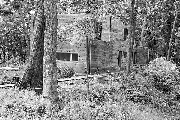 5 Sunny Modern House in the Woods4.jpg