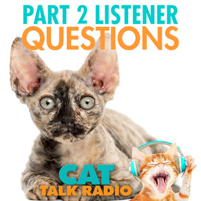 Listeners' Questions Pt 2