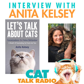 Let's Talk About Cats with author Anita Kelsey