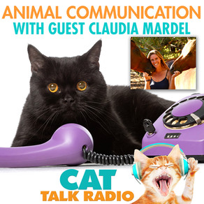 Animal Communication with Claudia Mardel