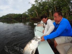 big-tarpon-everglades.jpg.JPG