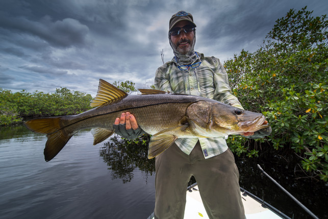 everglades-fly-fishing-guides.jpg