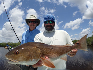 david-wirth-redfish-everglades.jpg.JPG