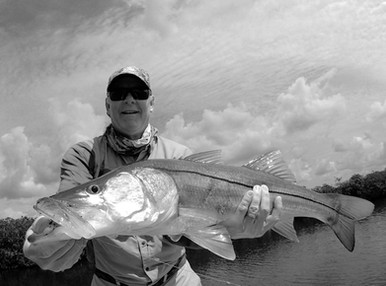 shallow-water-snook.jpg.JPG