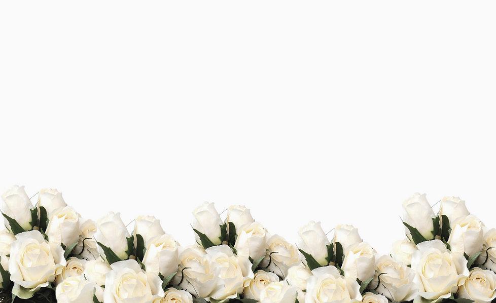 Pretty white rose border_edited.jpg